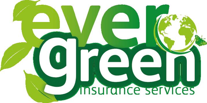 Evergreen Logo Development_Revised Globe